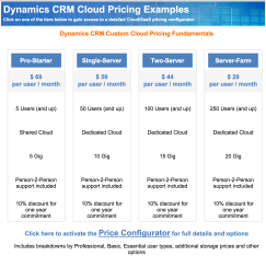 CRM_Pricing_Examples